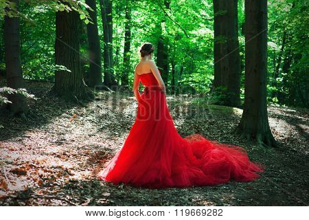 A girl in a long red dress and a royal crown