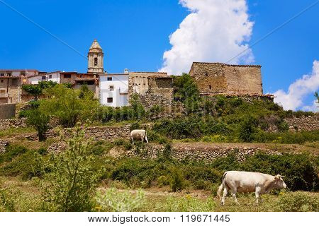 El Boixar village in Tinenca Benifassa of Spain Castellon