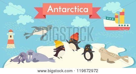 Antarctica cartoon animals vector illustration set.