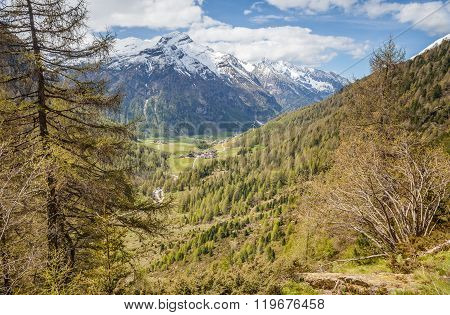 Mountain valley in spring time Riva di Tures Campo Tures South Tyrol Italy
