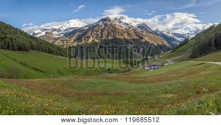 Mountain Valley In Spring Time