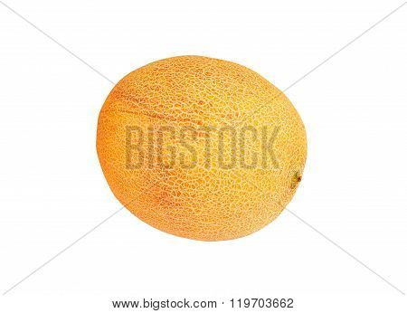 Ripe Cantaloup Melon