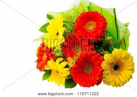 Yellow And Red Gerbera