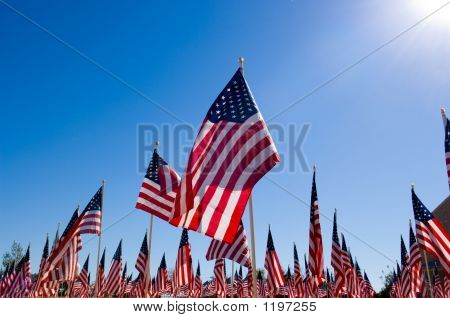 American Flag Display In Honor Of Veterans Day