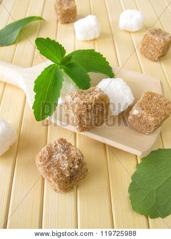 Stevia and sugar cubes