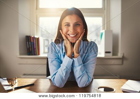 Business Woman Smiling At Camera