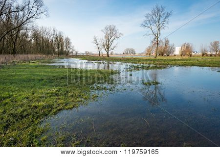Flooded Floodplain Next To A Dutch River