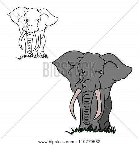Grey Elephant Silhouettes