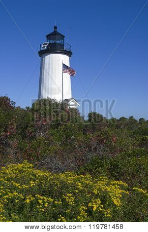 Cape Pogue Lighthouse Tower In Martha's Vineyard
