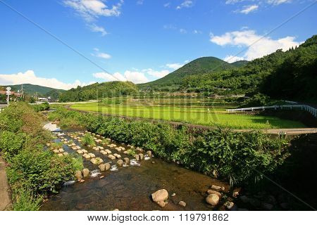 Country Side View Of Kumamoto Prefecture