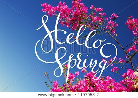 pink bougainvillea flowering branches on a background of blue sky with letters Hello sprint