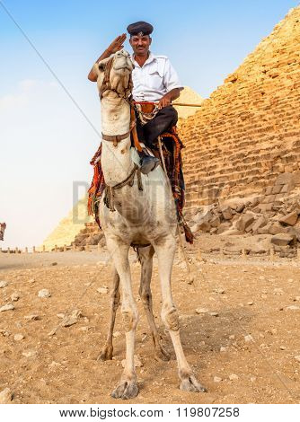 EGYPT, GIZA - OCTOBER 29 2014: A Man in Police Uniform Riding a Camel near the Giza Pyramids