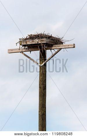 Osprey Nest on Wooden Platform