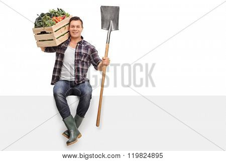 Young farmer carrying a crate full of vegetables on his shoulder and holding a shovel seated on a panel isolated on white background