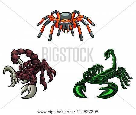 Scorpion and Tarantula