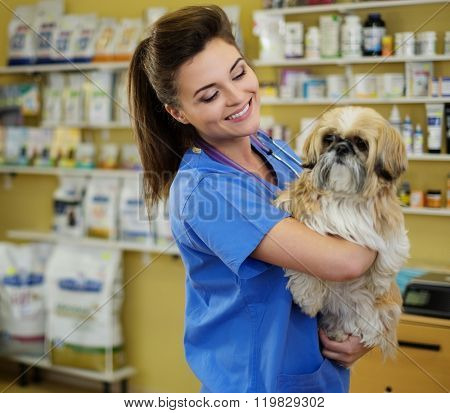Portrait of a beautiful veterinarian holding cute Shih Tzu at clinic.