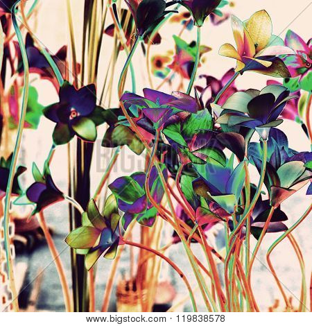 Multicolored Floral Background.