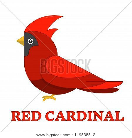 Red Cardinal Colorful Icon