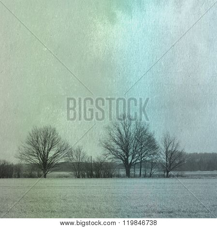 Trees Stands On Horizon In Empty White Field. Watercolors Background - Vintage Art Creation