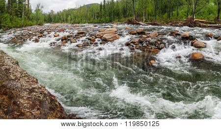 Rough Mountain River in Siberia. Panoramic view.