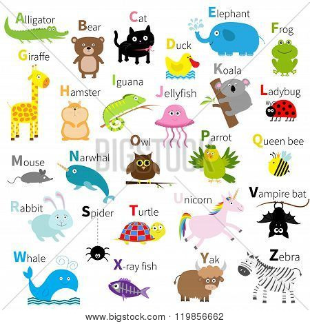 Zoo Animal Alphabet. Cute Cartoon Character Set. Isolated. White Design. Baby Children Education. Al