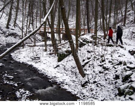 Winter Hike On A Nature Trail