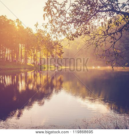 Pond Water And Sunrise With Vintage Effect.
