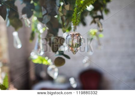Green leaves of fern in hanging glass water tubes. Elements of beautiful wedding decoration blurred background.