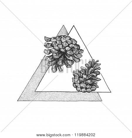 Two Pinecone On The Triangle Background