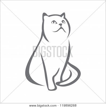 Persian cat abstract