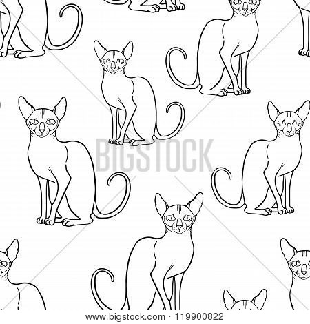 Seamless pattern with sphinx cat