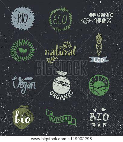 Ink logotypes set. Badges, labels,leaves,ribbons,plants elements, laurel.