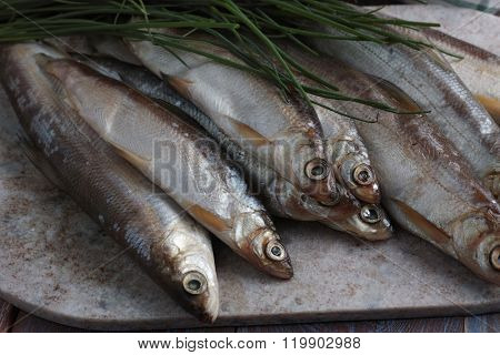 Raw vendace fish