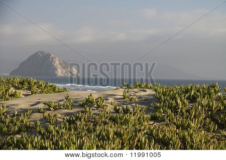 View from dunes to Morro Rock