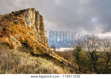 Cawfield Quarry Face