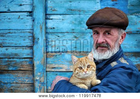 man playing with a cat on his hands