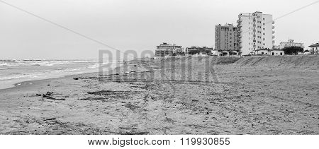 Winter beach panorama. Black ad white photo