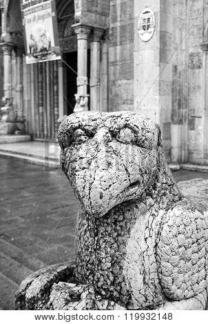 Ferrara, old city. Black and white photo