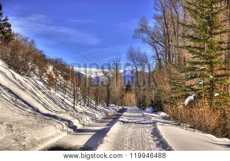 Snowy hiking trail in Aspen Colorado on a clear day