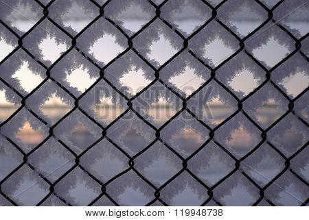 Hoarfrost on fence