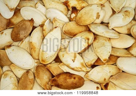 Food background - big unshelled  roasted pumpkin seeds