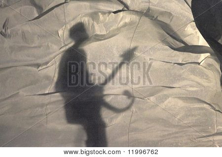 MIAMI - FEB 4: Prince performs behind a curtain, in silhouette, during half-time of Super Bowl XLI between the Chicago Bears and the Indianapolis Colts at Dolphin Stadium on February 4, 2007 in Miami.
