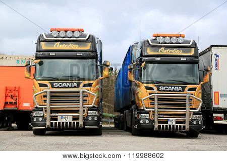 Two Colorful Scania R560 Trucks