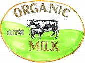 Постер, плакат: Cow Organic Milk Label Drawing