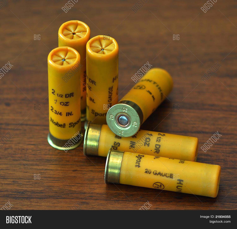 20 Gauge Shotgun Shells Shell Diagram Stock Photo Amp Images Bigstock