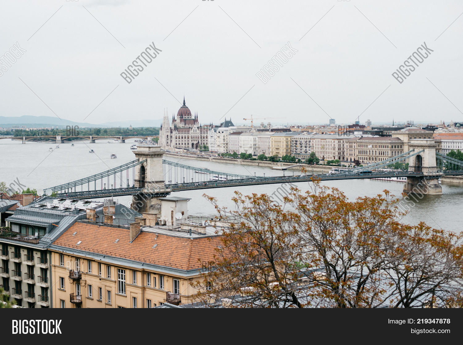 budapest big and beautiful singles Budapest tourism: tripadvisor has 1,116,003 reviews of budapest hotels, attractions, and restaurants making it your best budapest resource.