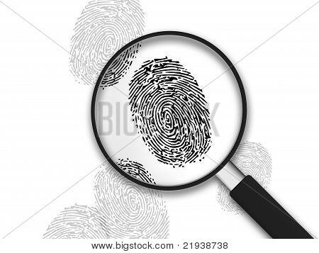 Magnifying Glass - Finger Prints
