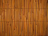 pic of tiki  - Bamboo Reed background A Tiki Tropical Hawaiian backdrop - JPG