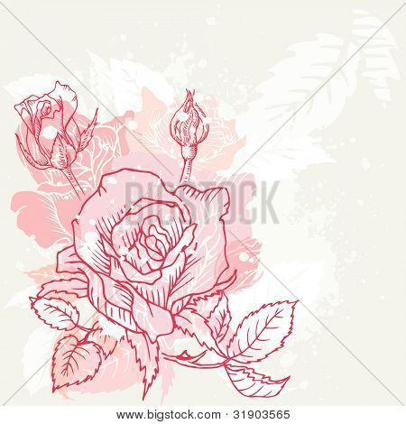 Floral Roses Background - in vector
