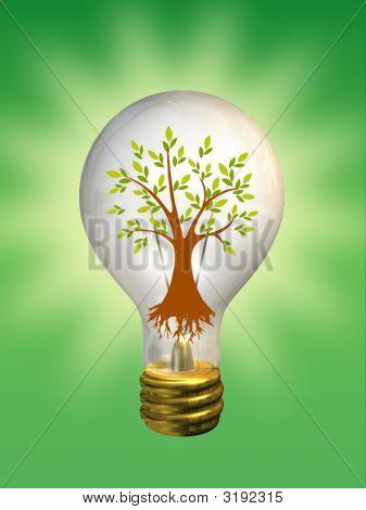 Environment Going Green